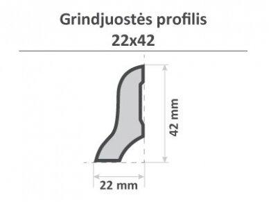 Grindjuostė, 22x42x2750mm 2